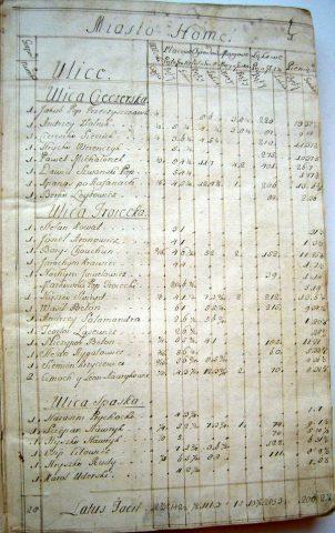 Люстрация Гомельского староства 1765 года