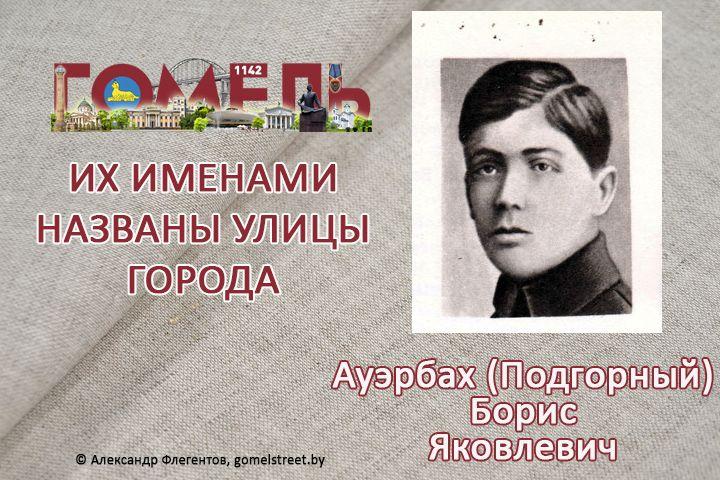 Ауэрбах (Подгорный), Борис Яковлевич