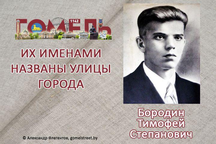 Бородин, Тимофей Степанович
