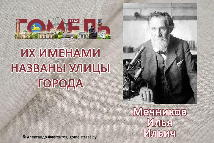 Мечников, Илья Ильич