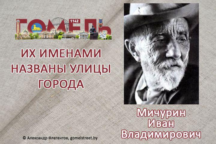 Мичурин, Иван Владимирович