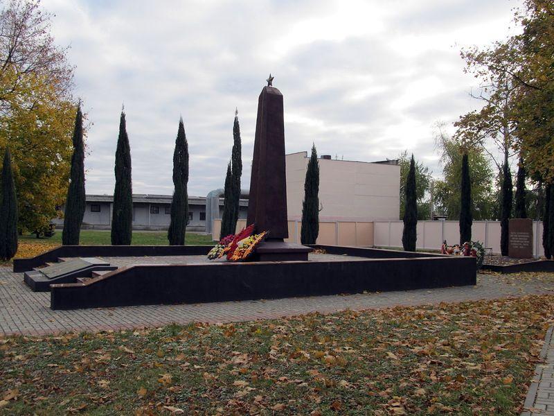 Братская могила воинов и военнопленных