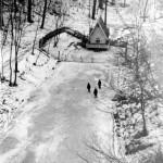 Лебединый пруд в 1959 году. Фото из архива Дымма А.Н.