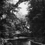 Мостик через пруд в парке культуры имени Луначарского. 1950-е.