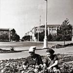 Посадка цветов на площадь Ленина. Фото 1960-х.