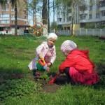 ekologicheskij-prazdnik04