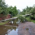 posledstviya-uragana-v-gomele02