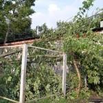posledstviya-uragana-v-gomele04