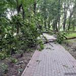 posledstviya-uragana-v-gomele13