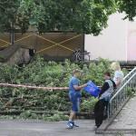 posledstviya-uragana-v-gomele25