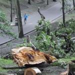 posledstviya-uragana-v-gomele30