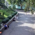 v-gomelskom-parke-ne-znayut02