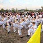 den-goroda-v-sovetskom-rajone13