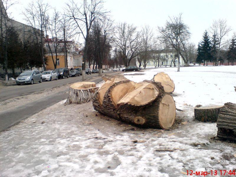 zelenogo-druga-stanovitsya02