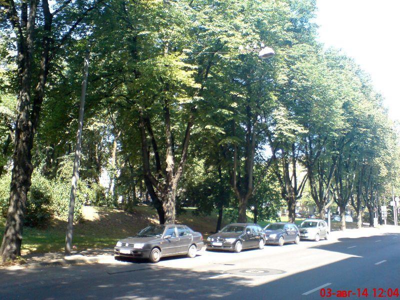 zelenogo-druga-stanovitsya07