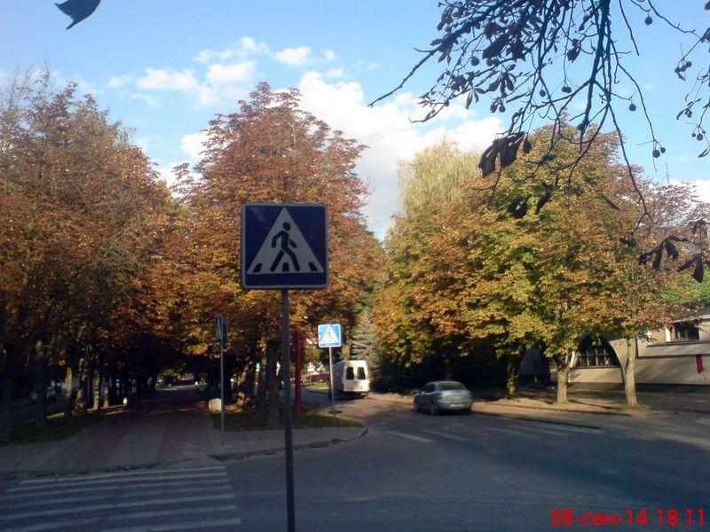 zelenogo-druga-stanovitsya08