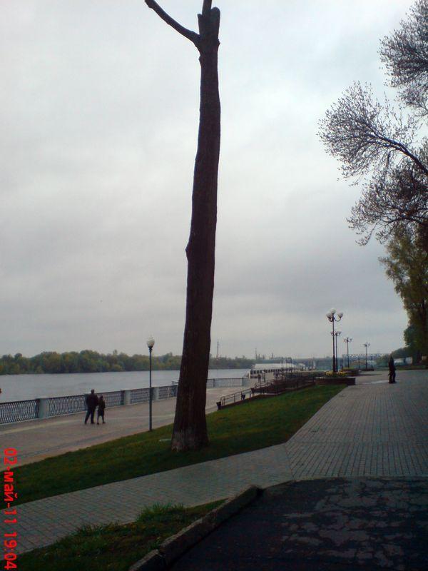 zelenogo-druga-stanovitsya09