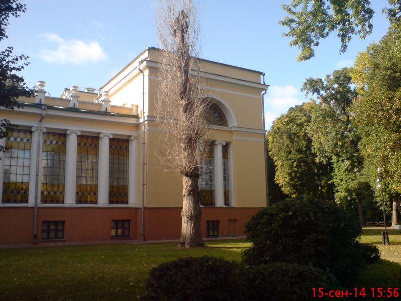 zelenogo-druga-stanovitsya10