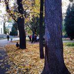 sergej-bezrukov-sdelal-fotoreportazh13