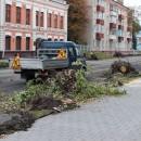 poyavyatsya-li-derevya-na-ulice-ktrova10