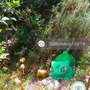 v-gomele-iskali-pokemonov-a8